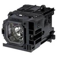 Bóng đèn máy chiếu Nec NP3250W